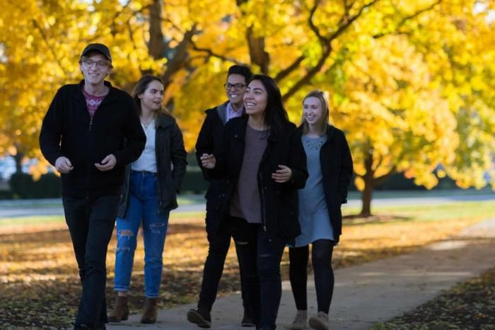 Wheaton College IL students walking under golden yellow trees