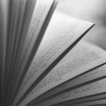 Open book with pages fanned out