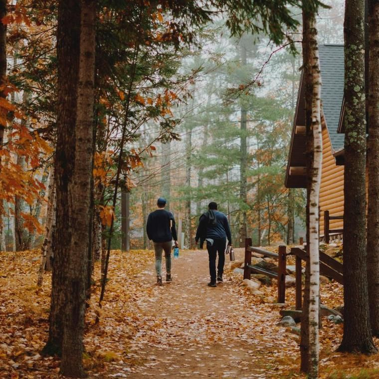 Students walking in forest in autumn