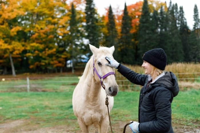 student petting a horse