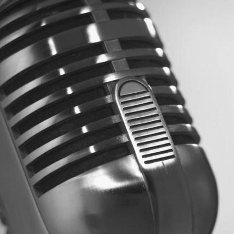 macro image of a recording microphone