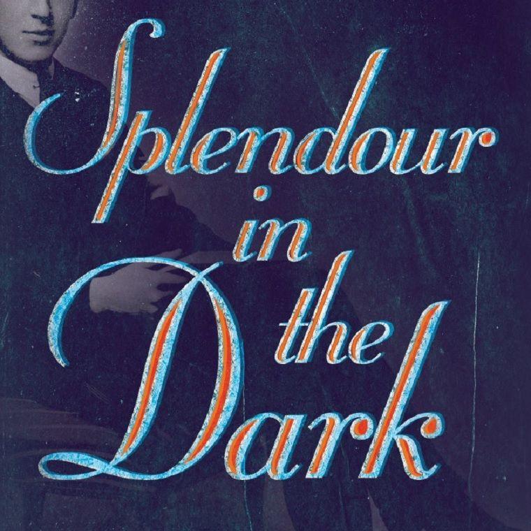 Splendour in the Dark book cover, Jerry Root