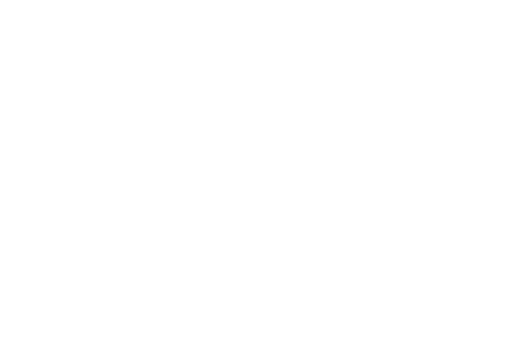 Center for Faith, Politics and Economics FPE logo white